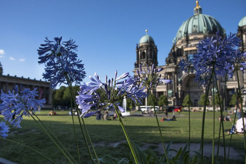 лето в Берлине